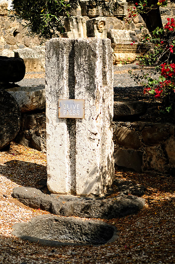 Olive press in Capernaum, Israel