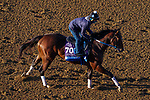 November 3, 2020: Jackie'S Warrior, trained by trainer Steven M. Asmussen, exercises in preparation for the Breeders' Cup Juvenile at Keeneland Racetrack in Lexington, Kentucky on November 3, 2020. John Voorhees/Eclipse Sportswire/Breeders Cup/CSM