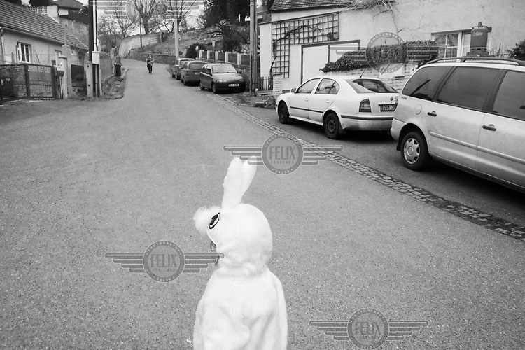 A child dressed as a rabbit waits for the Mardi Gras parade.