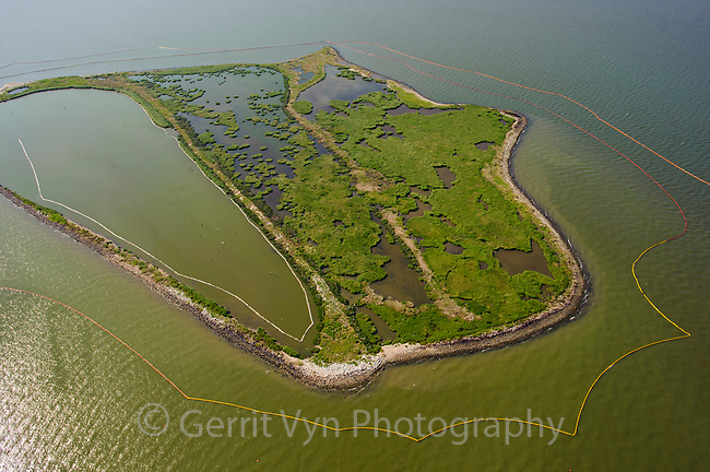 Queen Bess Island in Barataria Bay is a major bird nesting area and was heavily affected by the BP oil spill. Plaquemines Parish, Louisiana. July 2010.