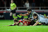 Dale Ford of Scarlets scores a try during the LV= Cup first round match between Scarlets and Leicester Tigers at Parc y Scarlets (Photo by Rob Munro, Fotosports International)