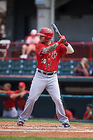 Harrisburg Senators outfielder Drew Vettleson (20) at bat during a game against the Erie Seawolves on August 30, 2015 at Jerry Uht Park in Erie, Pennsylvania.  Harrisburg defeated Erie 4-3.  (Mike Janes/Four Seam Images)
