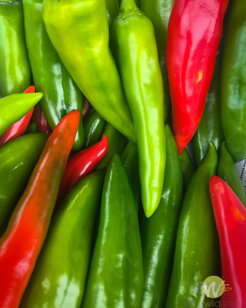 Hatch Chile peppers grown by Jessamin & Co. Lexington, KY