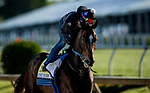 MAY13, 2021:  Midnight Bourbon gallops in preparation for the Preakness Stakes at  Pimlico Race Course in Baltimore, Maryland on May 13, 2021. EversEclipse Sportswire/CSM