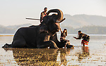 Family bathe with elephant by Nguyen Tan Tuan