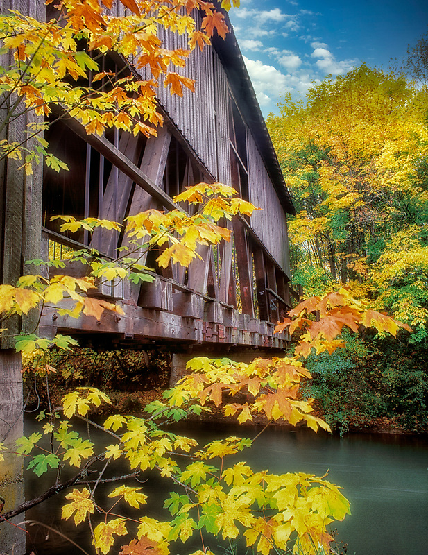 Chambers Bridge and fall color. Cottage Grove, Oregon