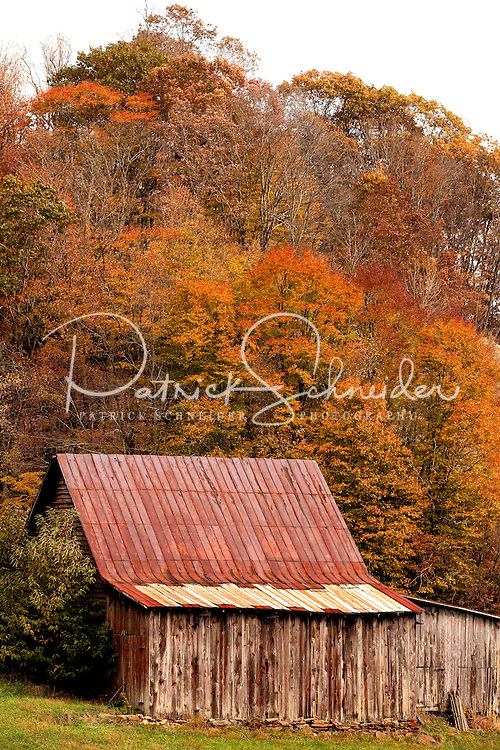 A weathered barn sits against a canopy of autumn leaves near Boone, North Carolina.