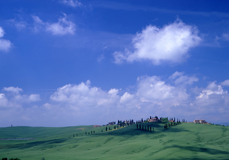 Europe, ITA, Italy, Tuscany, Siena, Typical Landscape, Blue Sky, Clouds, Lonely House.....[ For each utilisation of my images my General Terms and Conditions are mandatory. Usage only against use message and proof. Download of my General Terms and Conditions under http://www.image-box.com or ask for sending. A clearance before usage is necessary...Material is subject to royalties. Each utilisation of my images is subject to a fee in accordance to the present valid MFM-List...Contact | archive@image-box.com | www.image-box.com ]