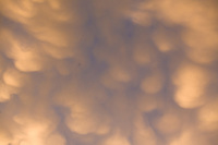 Mammatus clouds at sunset.<br /> <br /> Canon EOS 5D, 70-200 f/2.8L lens