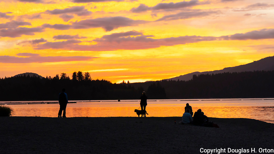 Sunset at Willaby Creek, Lake Quinault, Olympic Peninsula, Washington State.  Lake Quniault, Quinault Nation, lie adjacent to the Olympic National Forest and Olympic National Park.