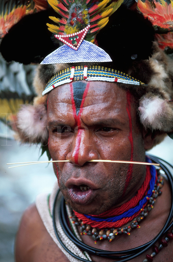 Portrait of a Huli Wigman-warrior; he has an ornate headdress, face paint and a pierced nose. Papua New Guinea.