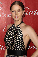 PALM SPRINGS, CA - JANUARY 04: Actress Amy Adams arrives at the 25th Annual Palm Springs International Film Festival Awards Gala held at Palm Springs Convention Center on January 4, 2014 in Palm Springs, California. (Photo by Xavier Collin/Celebrity Monitor)
