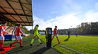 illustration picture showing the Standard players entering the pitch during a female soccer game between Standard Femina de Liege and Club Brugge YLA on the seventh matchday of the 2020 - 2021 season of Belgian Scooore Womens Super League , saturday 14 th of November 2020  in Angleur , Belgium . PHOTO SPORTPIX.BE | SPP | DAVID CATRY
