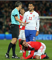 Ivan Obradivic of Serbia (R) speaks to match referee Alberto Mallenco about Hal Robson-Kanu of Wales who rolls on the ground after getting injured during the 2018 FIFA World Cup Qualifier between Wales and Serbia at the Cardiff City Stadium, Wales, UK. Saturday 12 November 2016