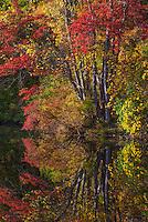 Reflection in Hidden Lake in Delaware Water Gap National Recreation Area.