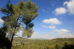 Israel, Jerusalem Mountains, a view from Road 3866