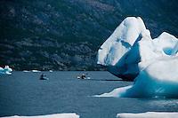 Kayakers paddle among the icebergs on Spencer Lake.