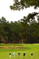 Photography taken at North Carolina's famed Pinehurst Resort.