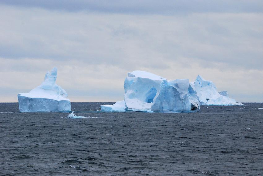 Hitchiker II - Along the Antarctic Sound