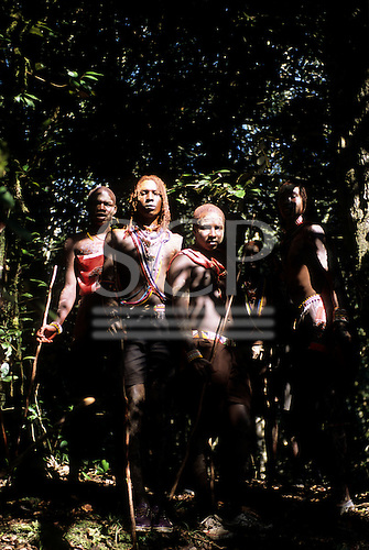 Lolgorian, Kenya. Siria Maasai; Eunoto ceremony; line of moran in the forest collecting white ochre for body paint.