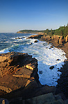 Summer view of Newport Cove, Acadia National Park, Maine, USA