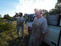 Preparation for the transhumance after a day's work in the heat. Julien Picard and Romain.<br /> Préparation à la transhumance après une journée de travail en pleine chaleur. Julien Picard et Romain.