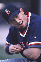 Nomar Garciaparra of the Boston Red Sox during a 2001 season MLB game at Angel Stadium in Anaheim, California. (Larry Goren/Four Seam Images)