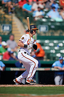 Baltimore Orioles second baseman Steve Wilkerson (12) follows through on a swing during a Grapefruit League Spring Training game against the Tampa Bay Rays on March 1, 2019 at Ed Smith Stadium in Sarasota, Florida.  Rays defeated the Orioles 10-5.  (Mike Janes/Four Seam Images)