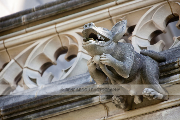 The Washington National Cathedral in Washington, DC is home to more than 200 stone-carved gargoyles.  The purpose of the gargoyles were to both keep evil out of the cathedral and to serve as a water drainage system in torrential rain - the water pours out of the mouth of the gargoyle.