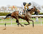 OZONE PARK, NY - APRIL 07: Discreet Lover (FL) #2, ridden by jockey Manuel Franco, wins the Excelsior Stakes on Wood Memorial Stakes Day at Aqueduct Race Track on April 7, 2018 in Ozone Park, New York. (Photo by Sue Kawczynski/Eclipse Sportswire/Getty Images)