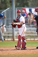 Indiana Hoosiers catcher Ryan Fineman (29) during a game against the Seton Hall Pirates on March 5, 2016 at North Charlotte Regional Park in Port Charlotte, Florida.  Seton Hall defeated Indiana 6-4.  (Mike Janes/Four Seam Images)