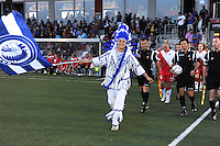 AA Gent Ladies - FC Utrecht :<br /> intrede van de Buffalo mascotte bij de eerste match van de AA Gent Ladies in de BeneLeague<br /> foto VDB / BART VANDENBROUCKE