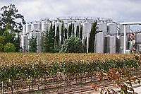 Fermentation tanks. Bacalhoa Vinhos, Azeitao, Portugal