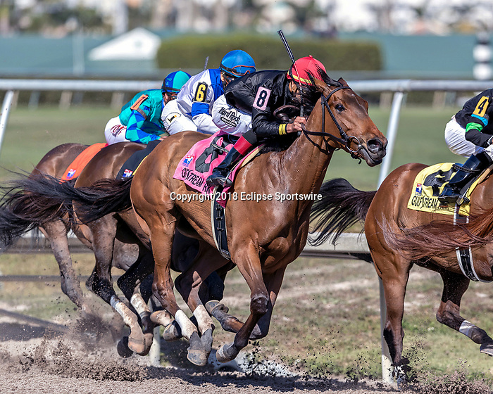HALLANDALE BEACH, FL - MAR 3:Fly So High #8 trained Claude R. McGaughey  III with Jose Ortiz in the irons prepares to take the lead at the final  turn on the way to winning the $200,000 HDavona Dale Stakes (G2) at  Gulfstream Park on March 3, 2018 in Hallandale Beach, Florida. (Photo by  Bob Aaron/Eclipse Sportswire/Getty Images)