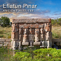 Pictures & Images of Eflatun Pınar, Eflatunpınar, Hittite Monument Art
