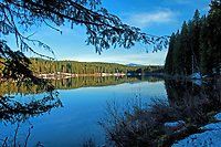 An early evening view of Clear Lake during the early spring, Willamette National Forest, Oregon.