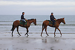 August 14, 2021, Deauville (France) - Racehorses after training at the beach in Deauville. [Copyright (c) Sandra Scherning/Eclipse Sportswire)]