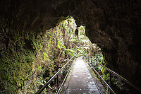 Entrance to Thurston Lava Tube in Hawai'i Volcanoes National Park, Big Island.