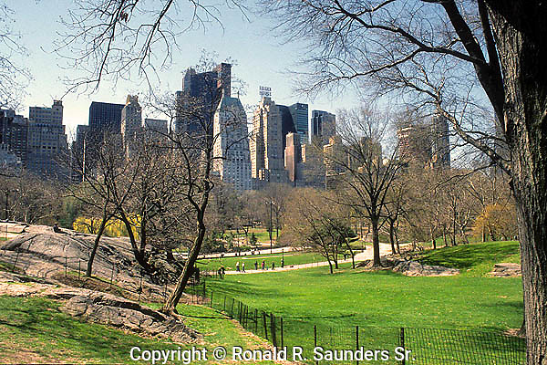 CENTRAL PARK WITH NEW YORK SKYLINE IN BACKGROUND