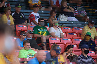 Fans in the grandstand during a Collegiate Summer League game between the Macon Bacon and Savannah Bananas on July 15, 2020 at Grayson Stadium in Savannah, Georgia.  (Mike Janes/Four Seam Images)