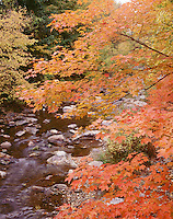 Green River, Williamstown, MA