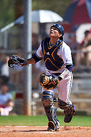 FIU Panthers catcher Luis Chavez (9) during a game against the South Dakota State Jackrabbits on February 23, 2019 at North Charlotte Regional Park in Port Charlotte, Florida.  South Dakota defeated FIU 4-3.  (Mike Janes/Four Seam Images)