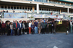 Royal Delta with jockey Mike Smithand connections after winning the Sabin Stakes (G3) at Gulfstream Park. Hallandale Beach Florida. 02-17-2013