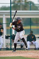 Pittsburgh Pirates third baseman Julio de la Cruz (24) at bat during a minor league Extended Spring Training intrasquad game on April 1, 2017 at Pirate City in Bradenton, Florida.  (Mike Janes/Four Seam Images)