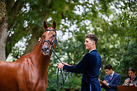 AUS-Sammi Birch's Findus PFB is presented during the First Horse Inspection for the CCI5*-L. 2021 GBR-Chedington Bicton CCI5* International Horse Trial. Bicton Park, Devon. Great Britain. Thursday 2 September.  Copyright Photo: Libby Law Photography
