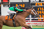 JUL 12,2014:The Pizza Man,ridden by Florent Geroux,wins the Stars and Stripes Stakes at Arlington Park in Arlington Heights,IL. Kazushi Ishida/ESW/CSM