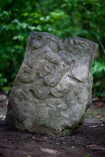 Excavated pieces at El Mirador archeological site.