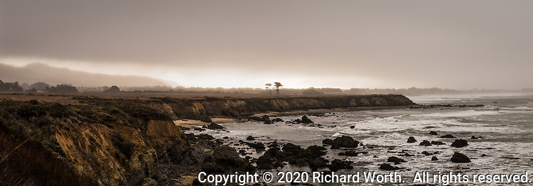 The rugged shoreline along the northern part of Año Nuevo State Park is shrouded in fog and light drizzle on New Year's Day, 2020.