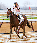 NEW YORK, NY - APRIL 09: Lewis Bay #2  with Irad Ortiz, Jr. aboard. wins the Gazelle Stakes at Aqueduct Race Track on April 9, 2016, in Ozone Park, New York. (Photo by Sue Kawczynski/Eclipse Sportswire/Getty Images)