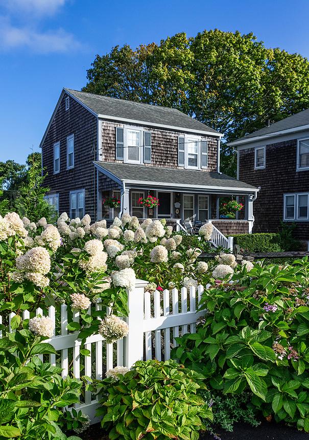 Charming house and garden, Chatham, Cape Cod, Massachusetts, USA.